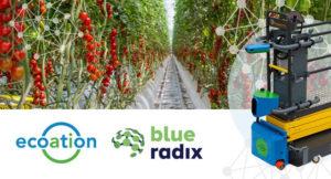 blue radix ecoation autonomous growing find&fix