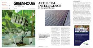 greenhouse canada blue radix